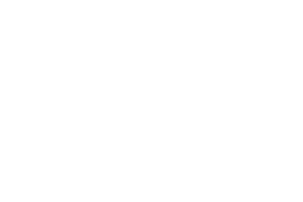 Ceji (Compagnie Générale du Jouet)